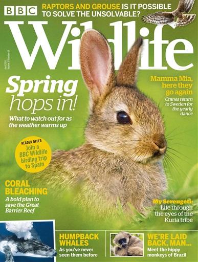 BBC Wild life – April 2019