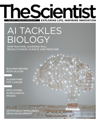 The Scientist – May 2019