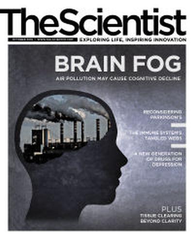 The Scientist - October 2019
