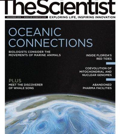 The-Scientist-November-2019