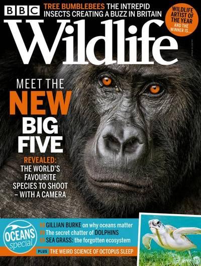 BBC Wildlife – June 2021
